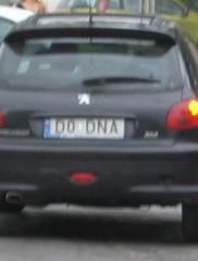 D0 DNA