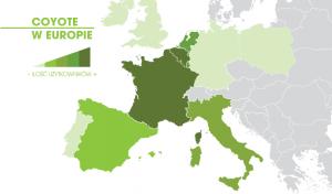 Coyote w Europie