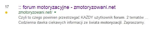 zmotoryzowani.net miejsce 17 na Google SERP