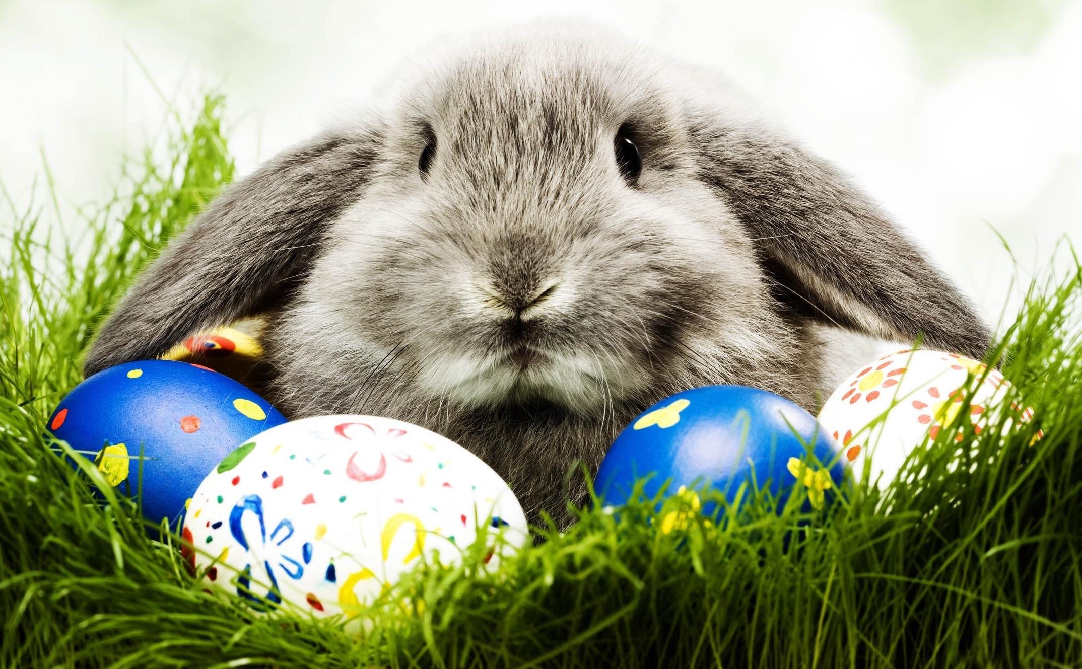 Jaki prezent na Wielkanoc?
